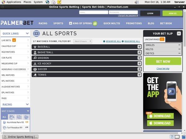PalmerBet Sports Betting