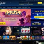 Casinomaxi Slots Bonus
