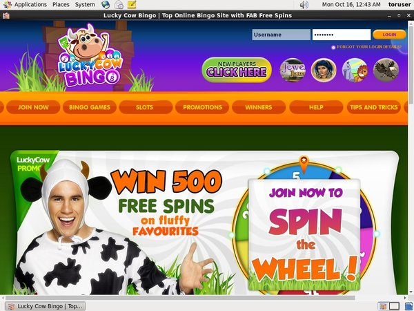 Luckycowbingo Welcome Offer